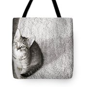 Kitty's Shadow Tote Bag