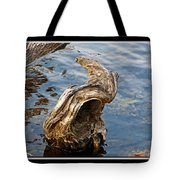Knarled Stump In The Water Tote Bag