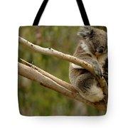 Koala At Work Tote Bag