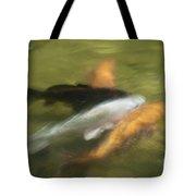 Koi Fish 05 Tote Bag