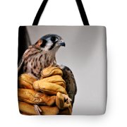 Krestrel Markings Tote Bag
