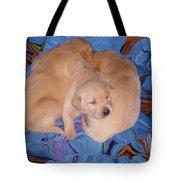 Lab Pups 2 Tote Bag