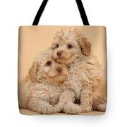 Labradoodle Puppies Tote Bag