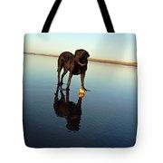 Labrador And Orange Tote Bag