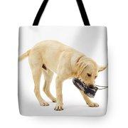 Labrador X Golden Retriever Puppy Tote Bag by Jane Burton