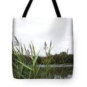 Lac Des Castors Tote Bag