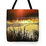 Lacassine Sundown Tote Bag