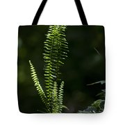 Lacy Wild Alabama Fern Tote Bag