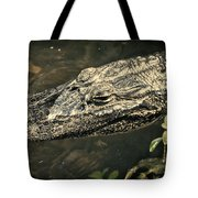 Lady Alice Queen Of The Lake Tote Bag