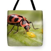 Lady Beetle Eats Potato Beetle Eggs Tote Bag
