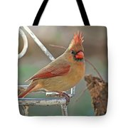 Lady Cardinal With Her Crown On Tote Bag