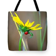 Lady In The Sun Tote Bag