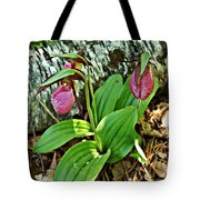 Lady Slipper I Tote Bag