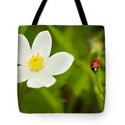 Ladybird Beetle Tote Bag