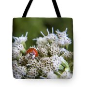 Ladybug Atop The Flowers Tote Bag