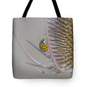 Ladybug Croosing The Prickles  Tote Bag