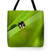 Ladybug With Black-brown And Red Color Tote Bag