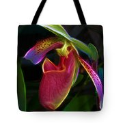 Lady's Slipper Tote Bag by Judi Bagwell