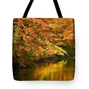 Lake And Forest In Autumn Tote Bag