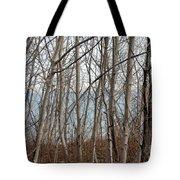 Lake Beyond The Trees Tote Bag