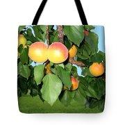 Lake Country Apricots Tote Bag