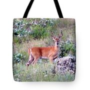 Lake Country Buck Tote Bag