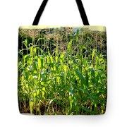 Lake Country Corn Tote Bag