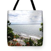 Lake Erie Beach At Sturgeon Point Tote Bag