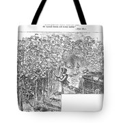 Lake Erie: Vineyard, 1873 Tote Bag