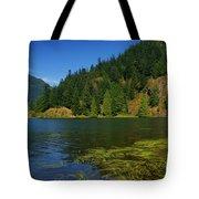 Lake Errock Tote Bag