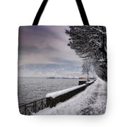 Lake Front In Winter Tote Bag
