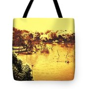 Lake In India Tote Bag