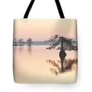 Lake Mattamuskeeet Sunrise Tote Bag