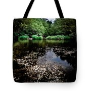 Lake Of Spirits Tote Bag