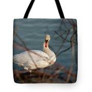 Lake Ontario Swan Tote Bag
