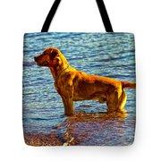 Lake Superior Puppy Tote Bag