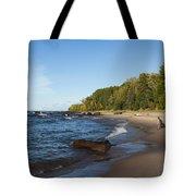 Lake Superior Union Bay 4 Tote Bag