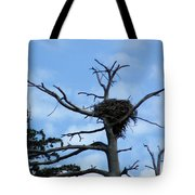 Lake Tahoe Eagle Nest Tote Bag