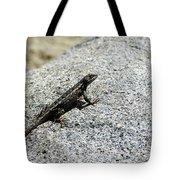 Lake Tahoe Lizard On A Hot Rock Tote Bag