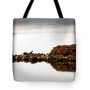 Lake Visitors Tote Bag