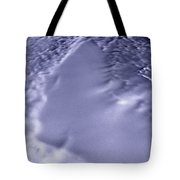 Lake Vostok, Antarctica, Satellite Image Tote Bag