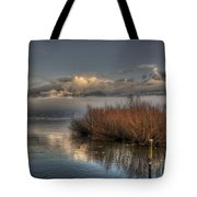 Lake With Pampas Grass Tote Bag