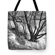 Lakeshore  Tote Bag