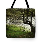 Lakeside View 2 Tote Bag