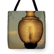 Lamp Light And Limb Tote Bag