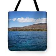 Lanai Coastline Tote Bag