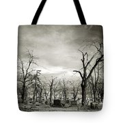 Land Of The Lost Spirits Tote Bag
