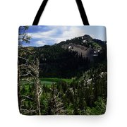 Landscape - Carson Pass 1 Tote Bag