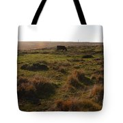 Landscape With Cow Grazing In The Field . 7d9935 Tote Bag