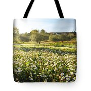 Landscape With Daisies Tote Bag